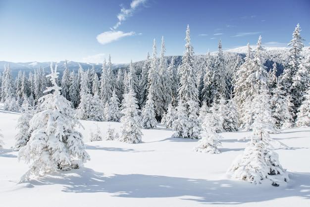 Fantastisch winterlandschap. magische zonsondergang in de bergen een ijzige dag.