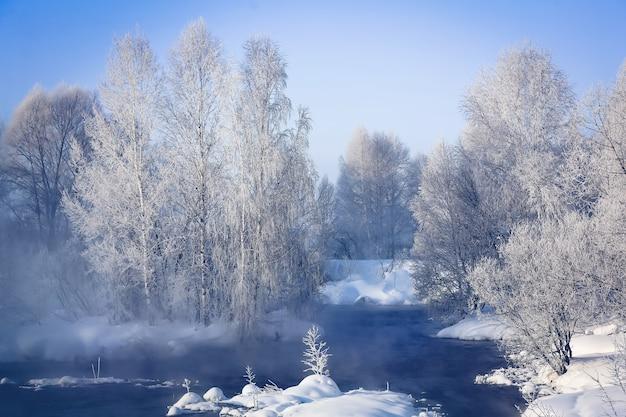 Fantastisch winterlandschap op de rivier. bomen in rijm. mist. heldere zonnige winterdag.