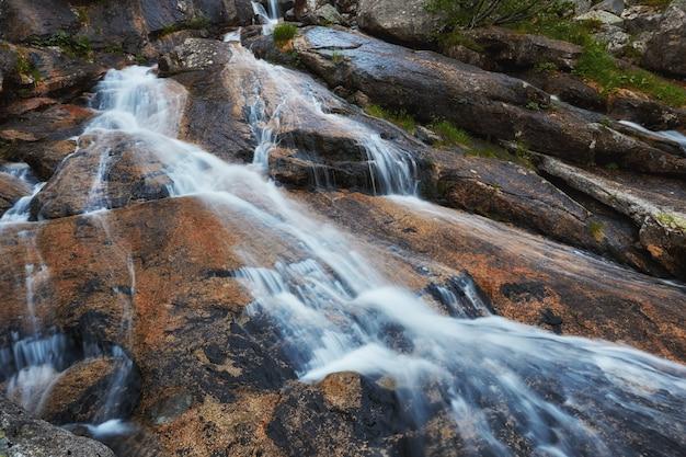 Fantastische bergbeekjes, weelderig groen en bloemen rondom. ontdooid bronwater uit de bergen. magisch uitzicht op hoge bergen, alpenweiden