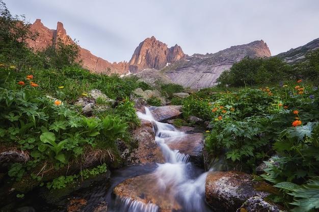 Fantastische bergbeken, weelderig groen en bloemen rondom. ontdooid bronwater uit de bergen. magisch uitzicht op hoge bergen