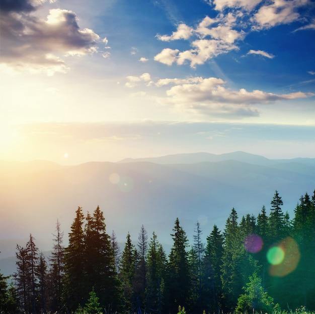 Fantastische mistige dag en heldere heuvels door zonlicht