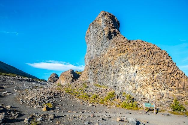 Fantastische stenen vormen op de jokulsargljufur trekking trail, ijsland