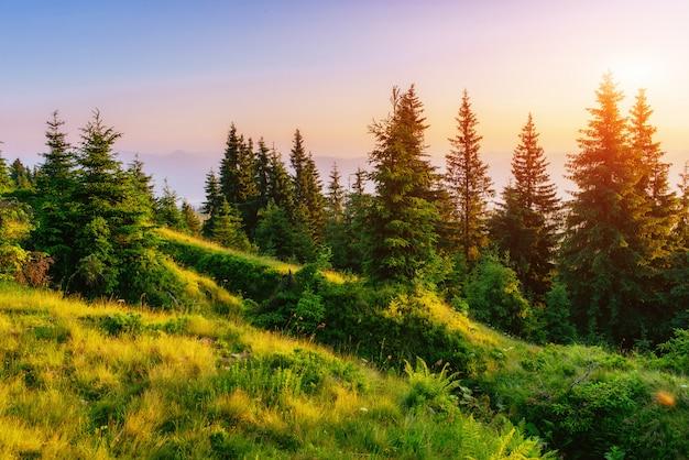 Fantastische zonsondergang in de bergen van oekraïne