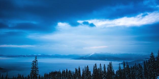 Fascinerend koud landschap van de besneeuwde zee