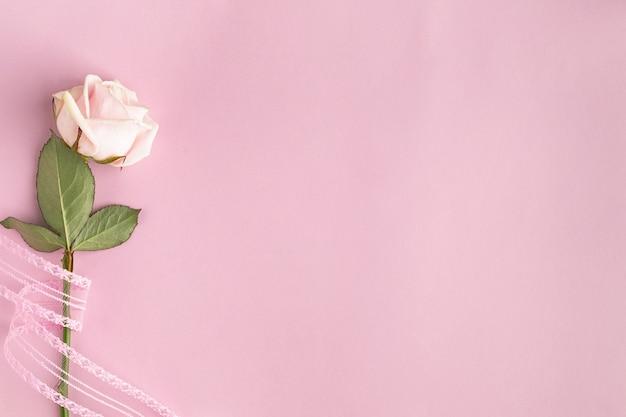 Feestelijk frame met een roos op een roze muur. bovenaanzicht, plat gelegd. kopieer ruimte.