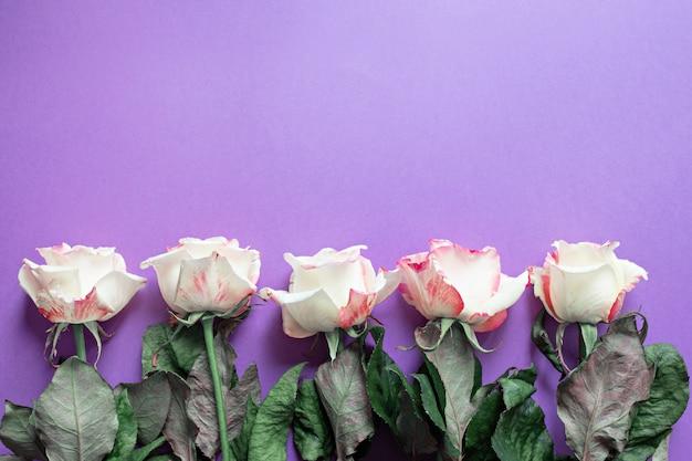 Feestelijke bloemen engelse roos samenstelling op paars