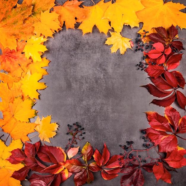 Feestelijke frame ansichtkaart voor de herfstvakantie of halloween gemaakt van fel veelkleurige herfstbladeren