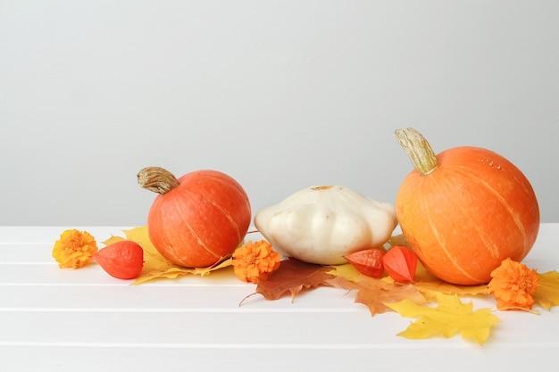 Feestelijke rustieke herfst compositie van pompoenen en esdoorn bladeren op witte houten achtergrond. concept van thanksgiving day of halloween. ruimte kopiëren.