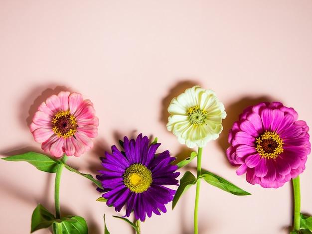 Fel veelkleurige bloemen op een roze achtergrond kopie ruimte, voor een ansichtkaart en een vakantie
