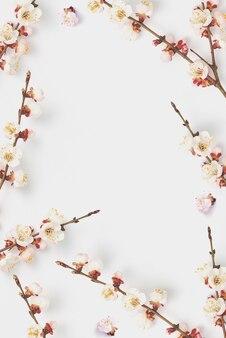 Felicitatiekaart van creatief frame met bloeiende natuurlijke twijgen van zacht roze abrikozenboom