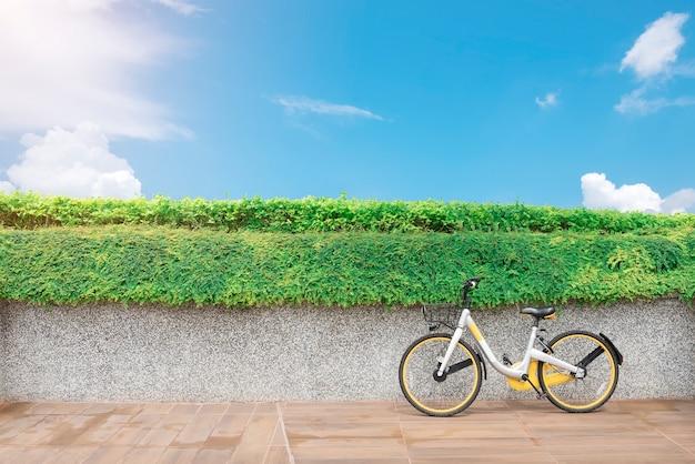 Fiets in park met groene installaties en blauwe hemel. reis- en zomervakantie concept.
