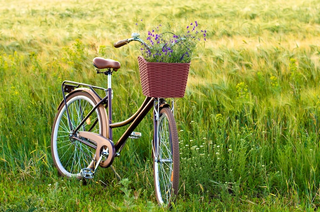 Fiets met bloemen in een mand in het veld