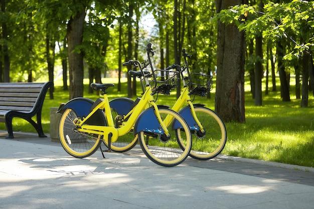 Fietsen worden geparkeerd in het stadspark. die gehuurd kunnen worden.