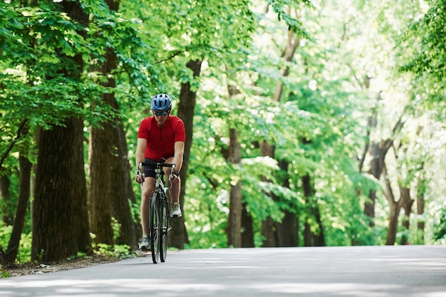 Fietser op een fiets is op de asfaltweg in het bos op zonnige dag