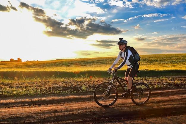 Fietser op fietstochten langs de tarwevelden in het zonlicht