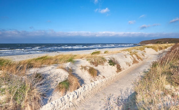 Fietspad langs het strand op het eiland hiddensee in duitsland.