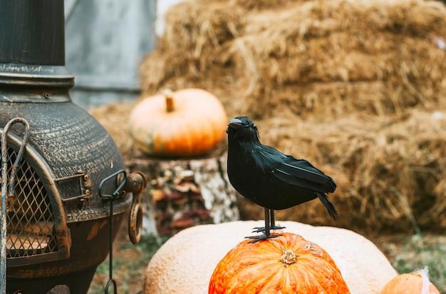 Figuur van de zwarte raaf op de veranda van een huis ingericht om een halloweenfeest te vieren