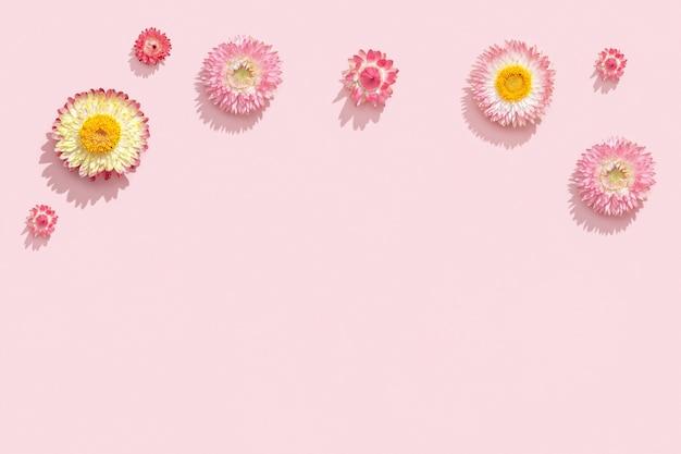 Fijne droge bloemen, roze bloesems, herbarium van dichtbij. natuurlijk bloemmotief, pastelkleurig, abstract van aard