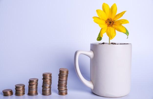 Financiële planning, geldgroei concept. gele bloem in een beker en stapels munten in oplopende volgorde. kopieer ruimte
