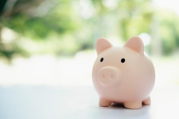 Finnace, geld besparen en investeringsconcepten. spaarvarken en munt.
