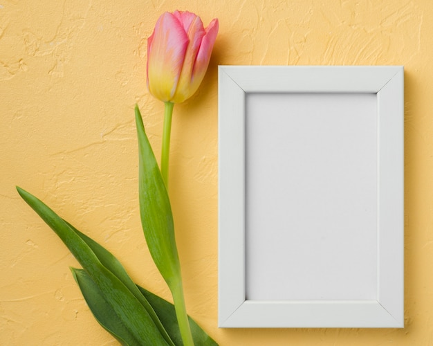 Flay leg de tulp naast het frame