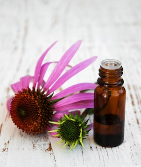 Fles met essentie-olie met paarse echinacea