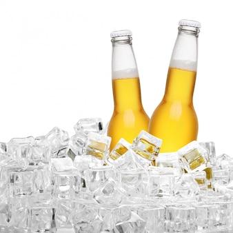 Flessen bier in de ijsblokjes die op witte achtergrond worden geïsoleerd