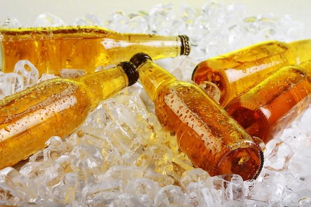 Flessen bier liggen in het ijs