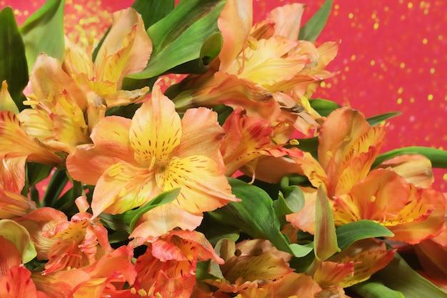 Floral achtergrond. selectieve aandacht. alstroemeria boeket op een rode achtergrond met bokeh.
