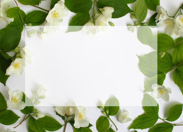 Floral frame gemaakt van jasmijn flowe geïsoleerd op een witte achtergrond bloemen frame