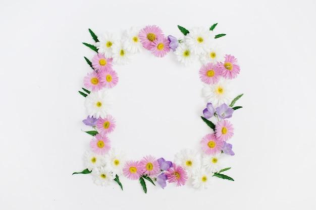Floral frame van witte en roze kamille madeliefjebloemen, groene bladeren op wit