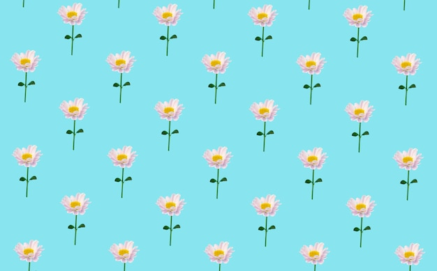 Floral minimale achtergrond. bloemen op een gekleurde achtergrond. creatieve minimale achtergrond