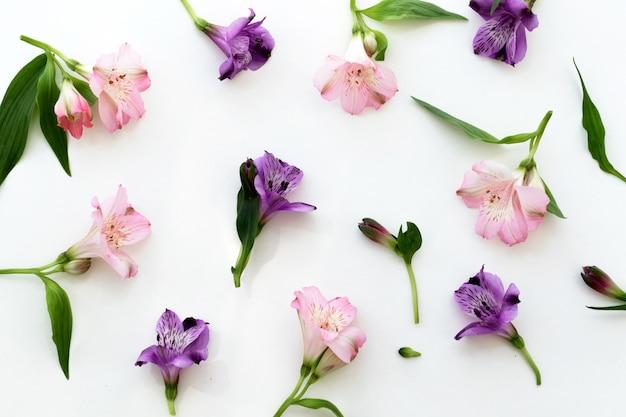 Florale achtergrond. rozen, eustoma, lelies op witte achtergrond. zomer, lente achtergrond.
