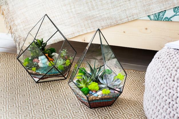 Florarium - samenstelling van succulenten, steen, zand en glas, element van binnenland, huisdecor