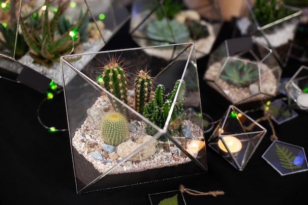 Florariumsamenstelling van cactus en vetplanten, steen en zand, element van interieur, interieur, glazen terrarium. glazen florariumvaas met vetplanten, cactussen. kleine tuin met home kamerplant