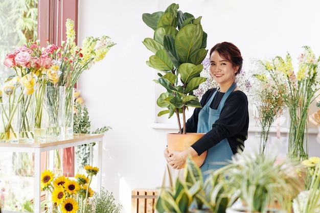 Flower shop eigenaar holding ficus plant