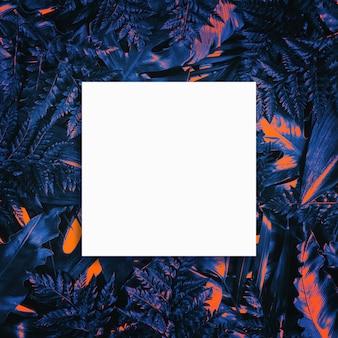 Fluorescerende zomer achtergrond, abstracte zomer leeg frame kaart