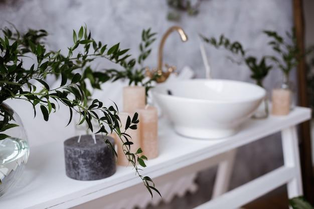 Focus op een plantentak. badkamer interieur detail