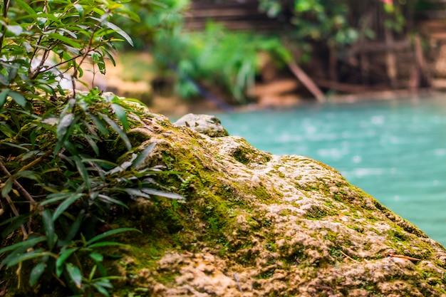 Focus stone face onscherpe achtergrond, groen zwembad.