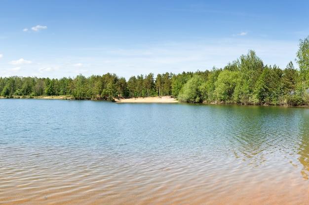 Forest lake met bodem van zandstrand