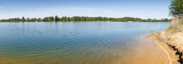 Forest lake met zand strand bedbodem en geel ondiep water