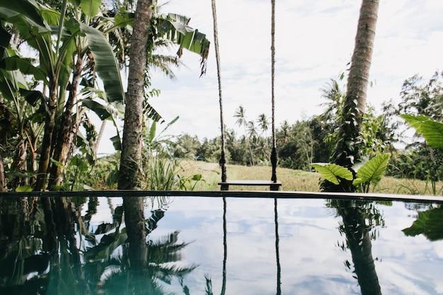 Foto van buitenzwembad en palmbomen. exotisch landschap met bos en meer.