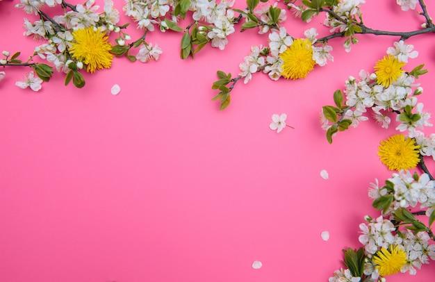 Foto van de bloesem boom van de de lente witte kersen op roze oppervlakte