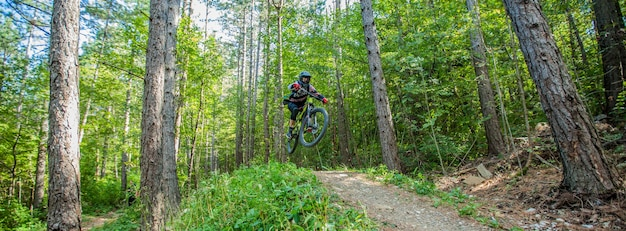 Foto van een fietser omringd door loofbomen in het bos