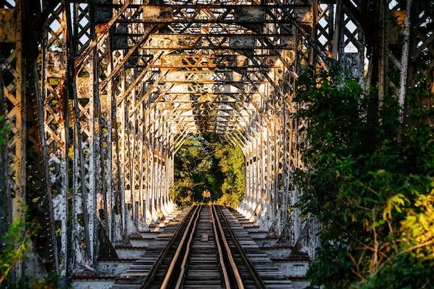 Foto van een mysterieuze spoorweg omgeven door bomen