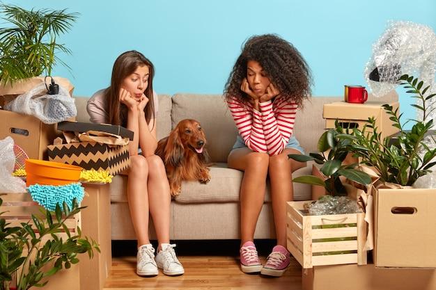 Foto van twee vrouwen van gemengd ras zitten op een comfortabele bank en kijken naar rashond, verhuizen naar nieuw appartement om te leven, spullen inpakken, veel pakketten rond, blauwe muur op de achtergrond, nieuwe woning gekocht