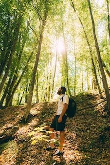 Foto van wandelaar man in bos wegkijken, zonnige dag. reizen is een goed idee.