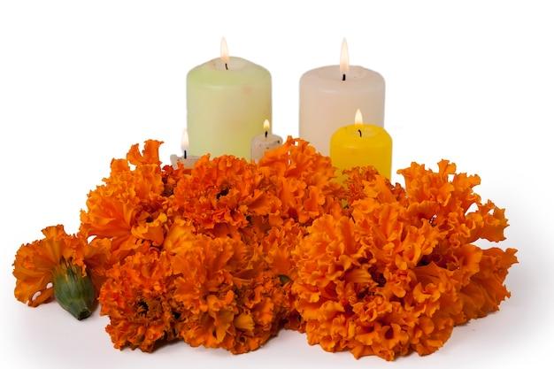 Foto voor el dia de muertos en halloween met traditionele attributen