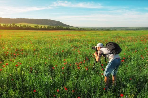 Fotograaf die foto's maakt van een veld met klaprozen tijdens zonsondergang