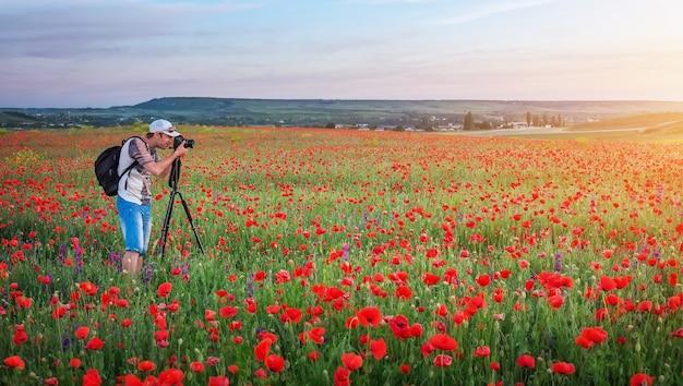 Fotograaf die foto's maakt van klaprozen in het veld tijdens zonsondergang